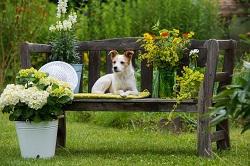 w12 garden planner in acton